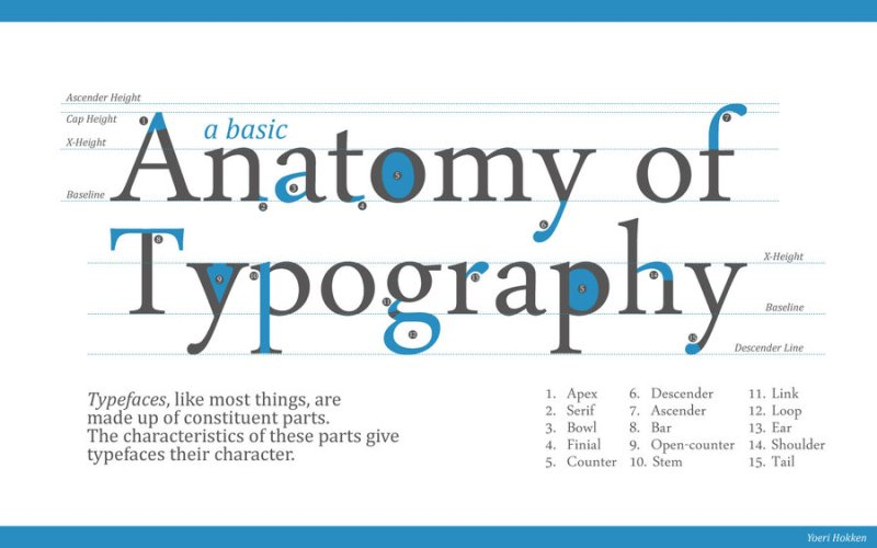 anatomy_of_typography_by_yordanh-d2w81pt